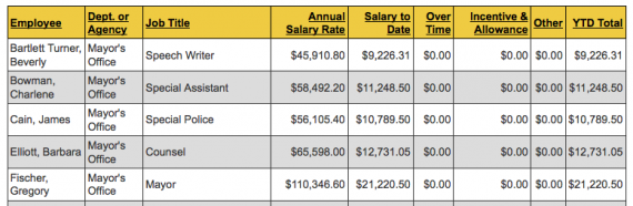 City Employees Salaries snippet