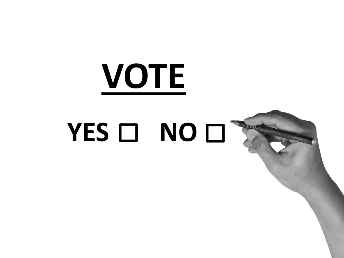 vote, poll, election